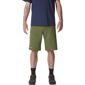 Berghaus Baggy Light Shorts Men Chive